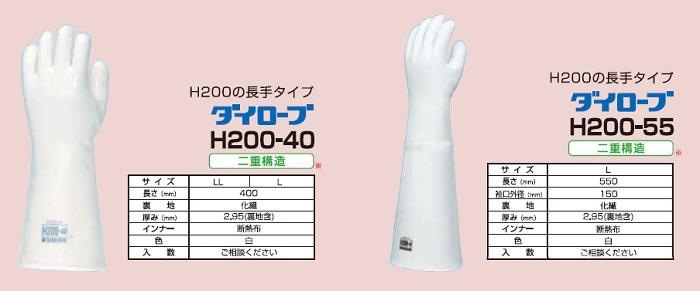 g_dairobeH200_05